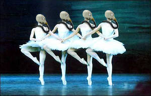 Gas-mask Swans