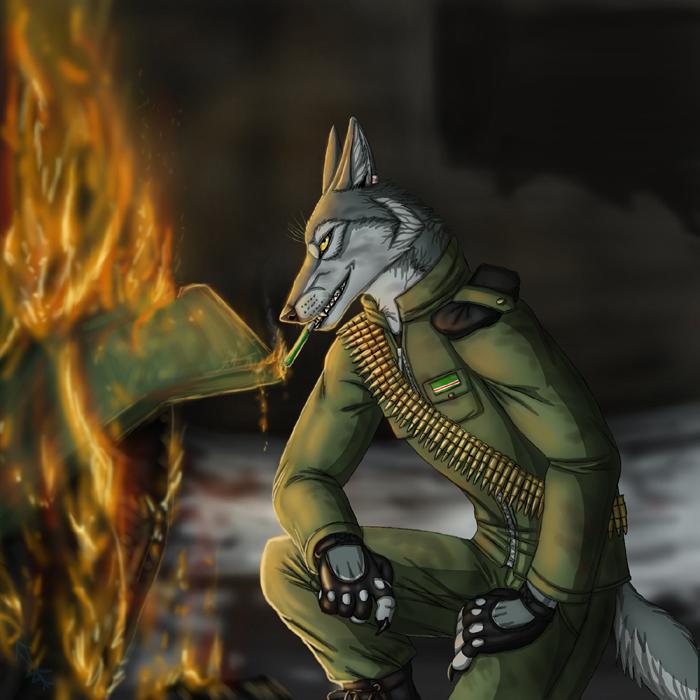 Wolf warrior by BullTerrierKa