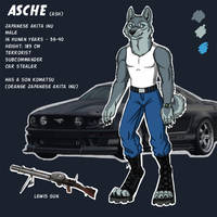 Asche reference by BullTerrierKa