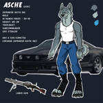 Asche reference