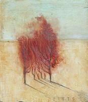Huddled Trees by SethFitts