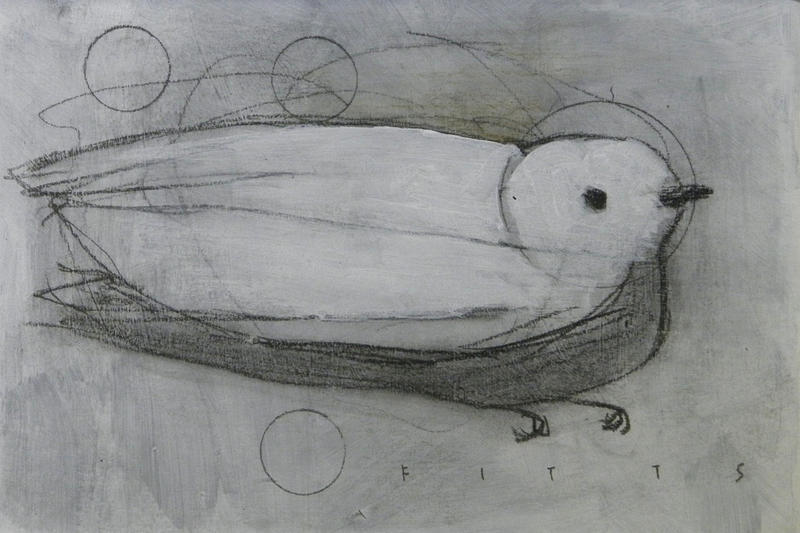 White Bird, 3 Circles by SethFitts