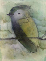 Tufted Bird, Green