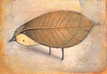 Leaf Bird, Observing by SethFitts