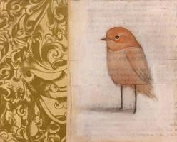 Ruddy Faced Bird (Looking)
