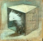 White Fox in an old Box