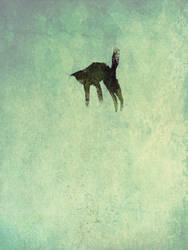 10 Foot Jumping Cat by SethFitts