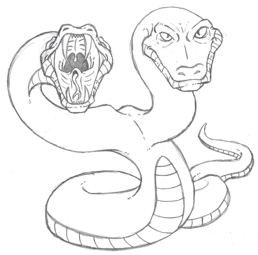 Twin Headed Python by Phycosmiley on DeviantArtThree Headed Animal Drawing
