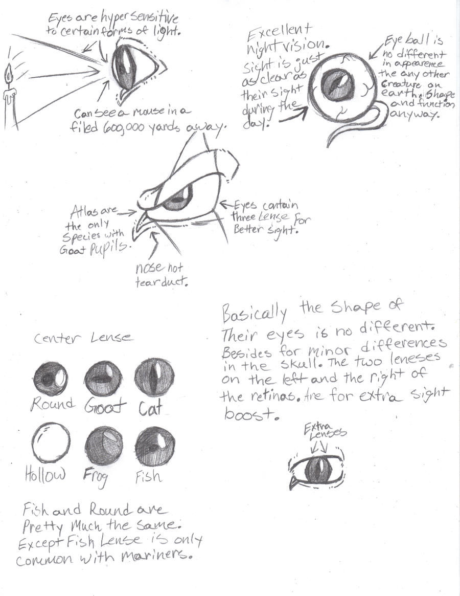 Eye Diagram by Phycosmiley on DeviantArt