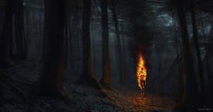 Ashen Falls - FireWoods