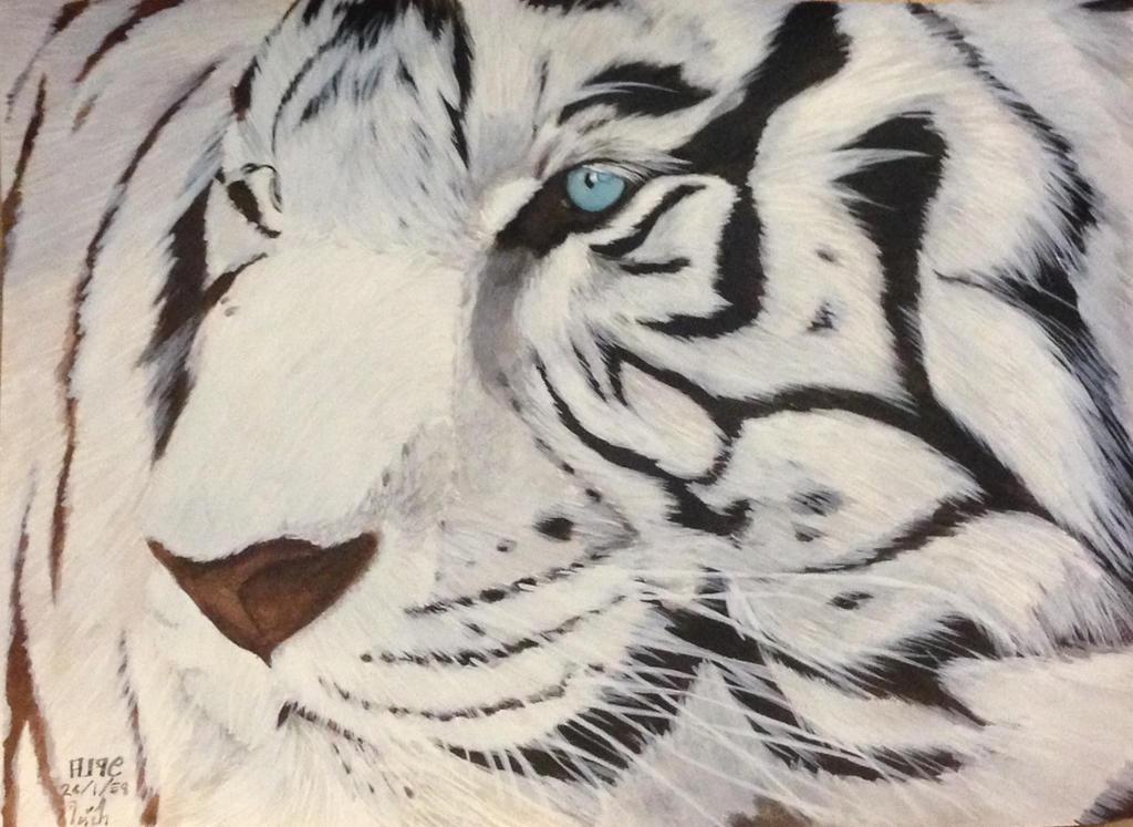 White tiger by alpregrade