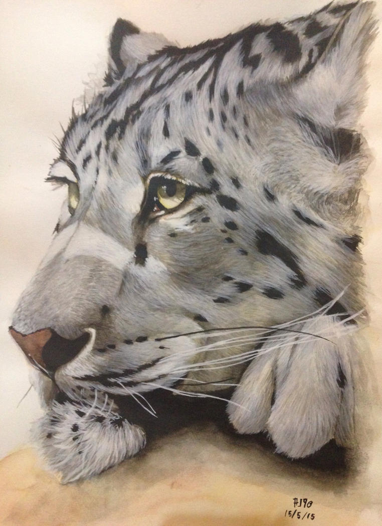 Snow leopard inspired by Jay-co by alpregrade