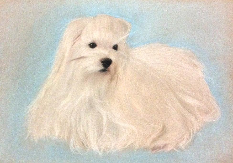 Kati the dog by alpregrade