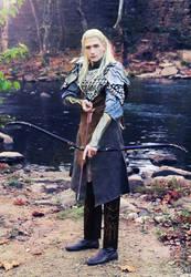 Do not think I won't kill you, dwarf! by celticruins