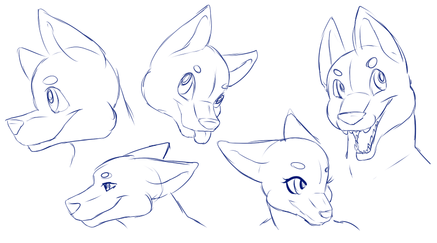 5 Furry Heads