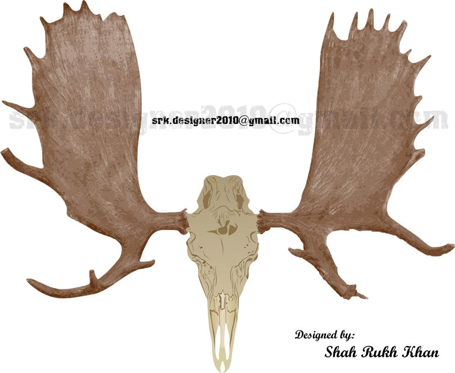 Moose Skull By Smartysrk On Deviantart