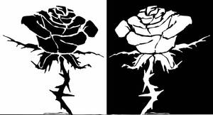 Tattoo Duality