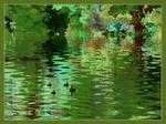 Broadditch Pond - The Baby Sitter