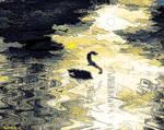 Duckus Minimalist