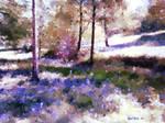 Bluebells At Ashenbank Woods