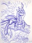 Chrysalis Sketch