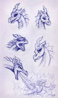 Dragon Chrysalis Portraits
