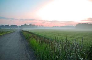 Morning walk by pepsipupsi