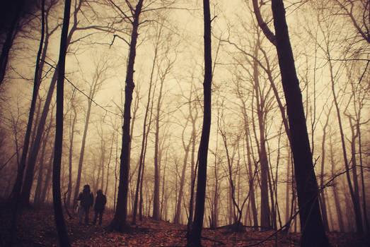 fog wanderers