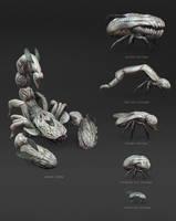 CA Team Challenge_creature concept_001_CSheet by albino-Z