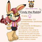 Cindy the rabbit by genesis romero
