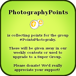 PhotographyPoints's Profile Picture