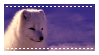 Arctic fox - stamp by Martith