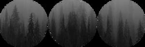 Dark forest deco divider