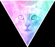 Triangle decor - Galaxy cat by Martith