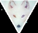 Triangle decor - Arctic Fox