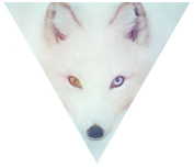Triangle decor - Arctic Fox by Martith