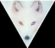 Triangle decor - Arctic Fox by Martith