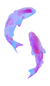 Vaporfish [F2U] by Martith