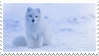 Arctic fox by Martith
