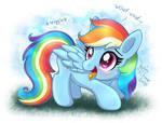 MLP FIM - Doggy Rainbow Dash