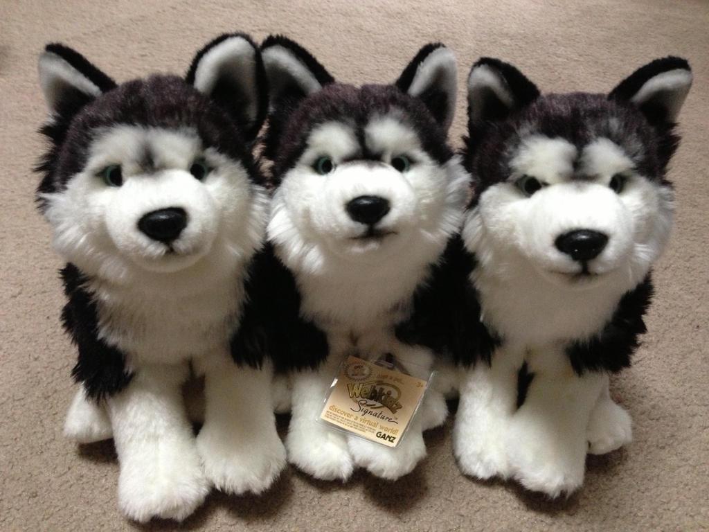 Webkinz Signature Siberian Huskies by sportstar104 on