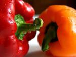 Pepper Colors