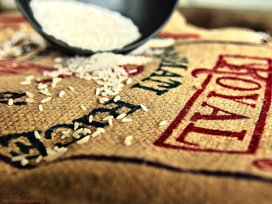 Basmati Rice by alimuse
