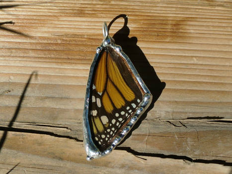 Real Monarch Butterfly Wing Necklace - Front Wing