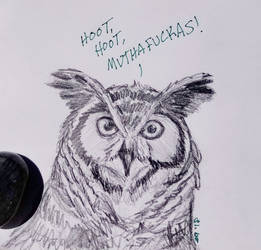 Great Horned Owl Sketch by Bluecrest-Rubenaris