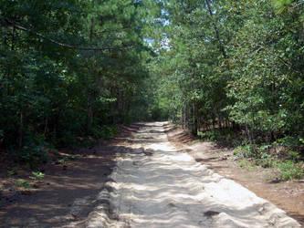 Path01