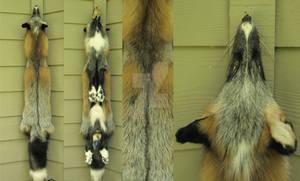 White Mark Cross fox