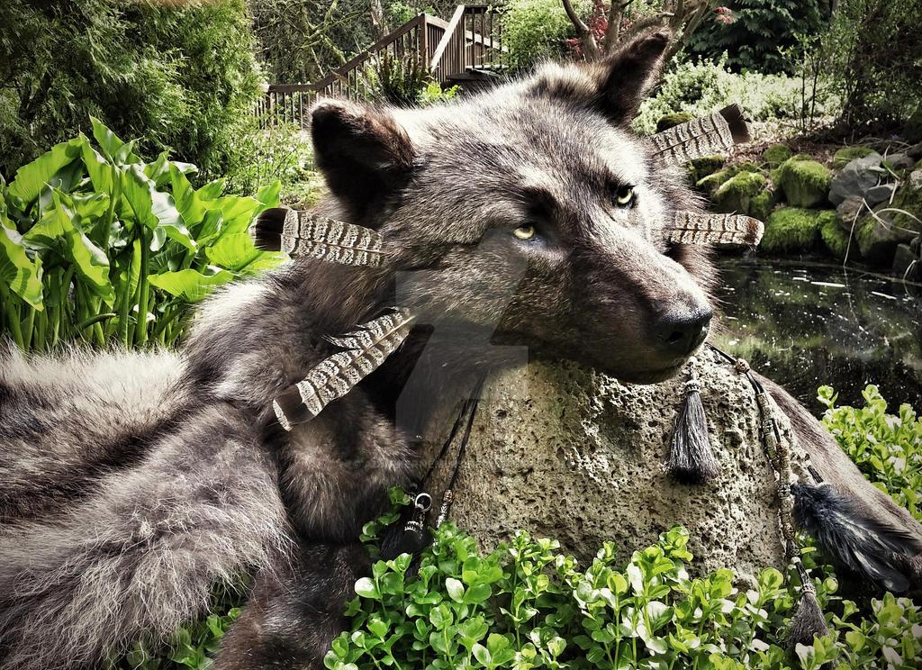 Wolf Dancer headdress by AdarkerNEMISIS