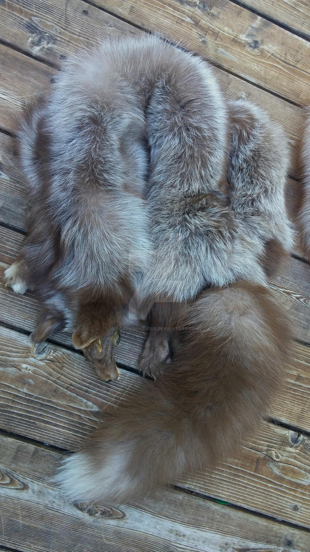 Plolish brown fox Scrap FS by AdarkerNEMISIS