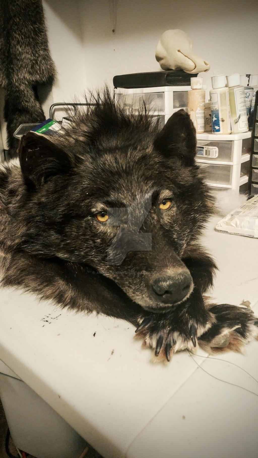 Black wolf wip by AdarkerNEMISIS